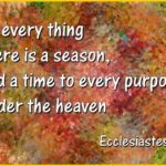 https://sharefreeads.wordpress.com/2012/10/28/turn-turn-turn-to-everything-there-is-a-season/